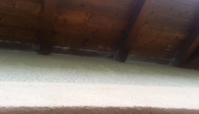 Nid sous toiture dans combles aménagées (Vosges - 88) 2013-018