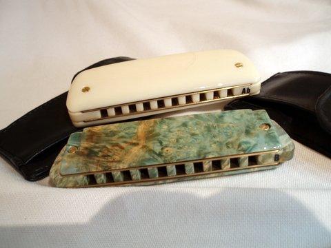 Photos harmonicas Brodur - Page 14 P1010010