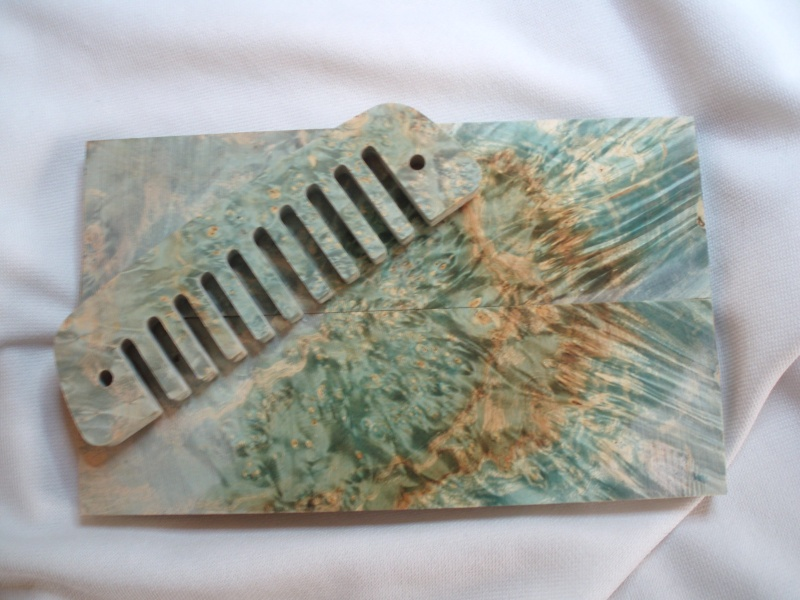 Photos harmonicas Brodur - Page 14 P1010013