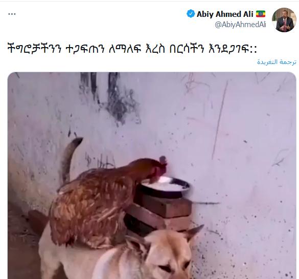 كلب وفرخة.. رئيس الوزراء الإثيوبي أبي أحمد ينشر فيديو غريب على تويتر  0014