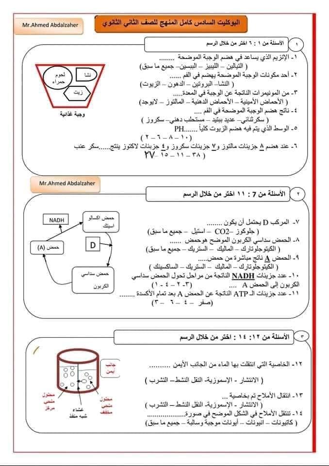 امتحان أحياء 2 ثانوي نظام جديد 10367