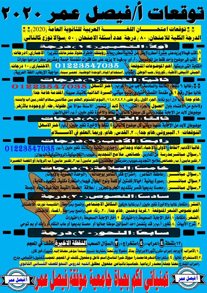 توقعات امتحان اللغة العربية 2020 11841