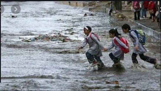 التعليم:  14 محافظة تتأثر بموجة طقس غير مستقرة.. وتعليق الدراسة قرار المحافظين 1187