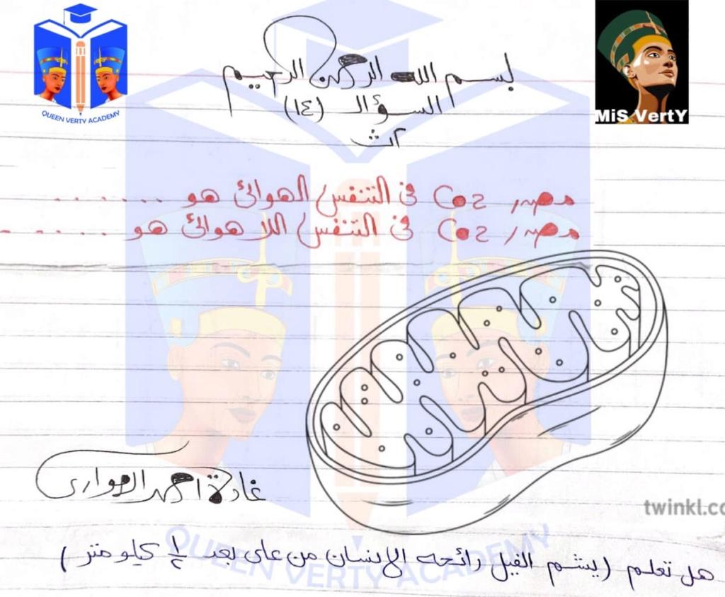 مراجعة الاحياء للثانوية العامة أ/ غادة الهواري 13009