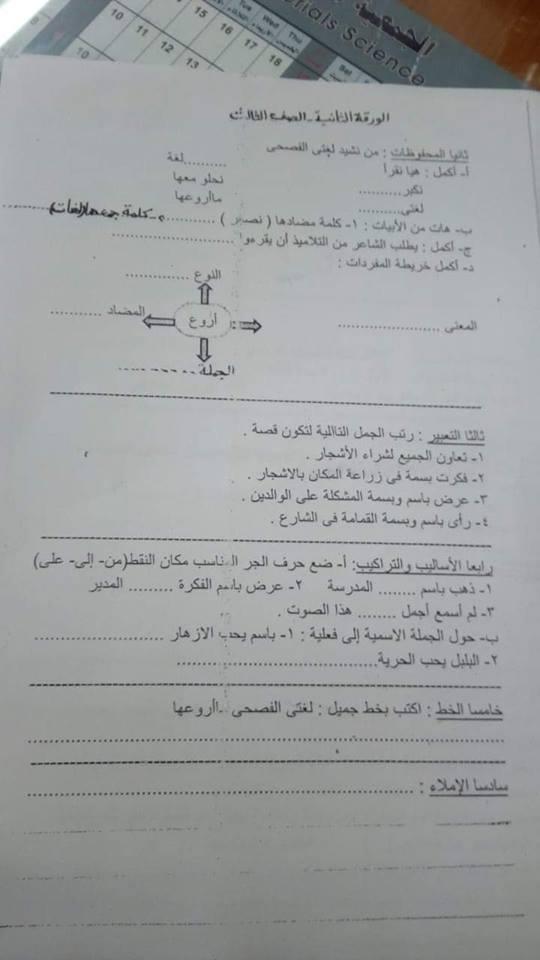 امتحان اللغة العربية للصف الثالث الابتدائي ترم أول 2019 إدارة وسط الاسكندرية التعليمية 13107