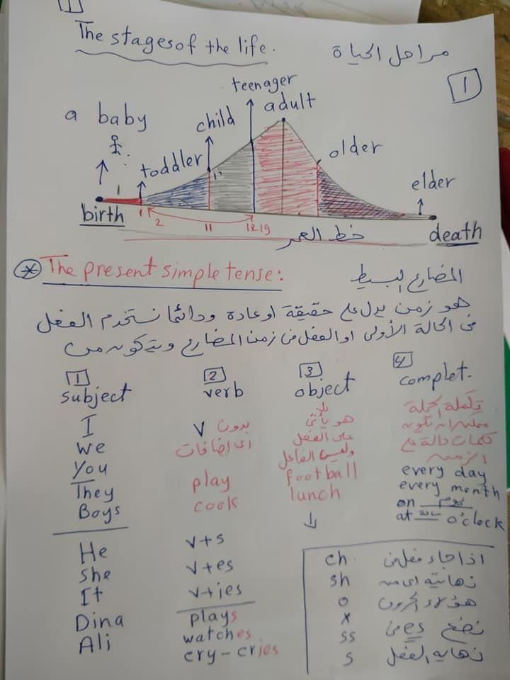 شرح الدرس الاول كونكت بلس connect plus الترم الثاني الصف الثالث الابتدائي 13489