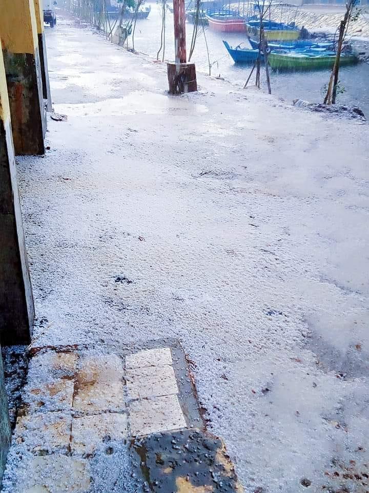 عاجل.. بالصور: تساقط الثلوج على محافظة كفر الشيخ 13755210
