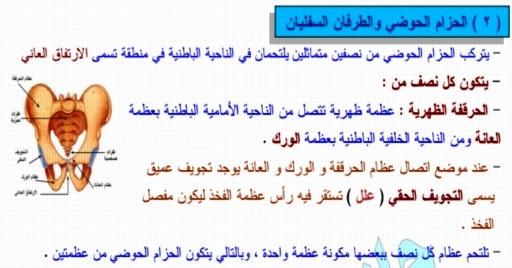 أقوى مذكرة أحياء للصف الثالث الثانوي أ/ حاتم حسين 14112