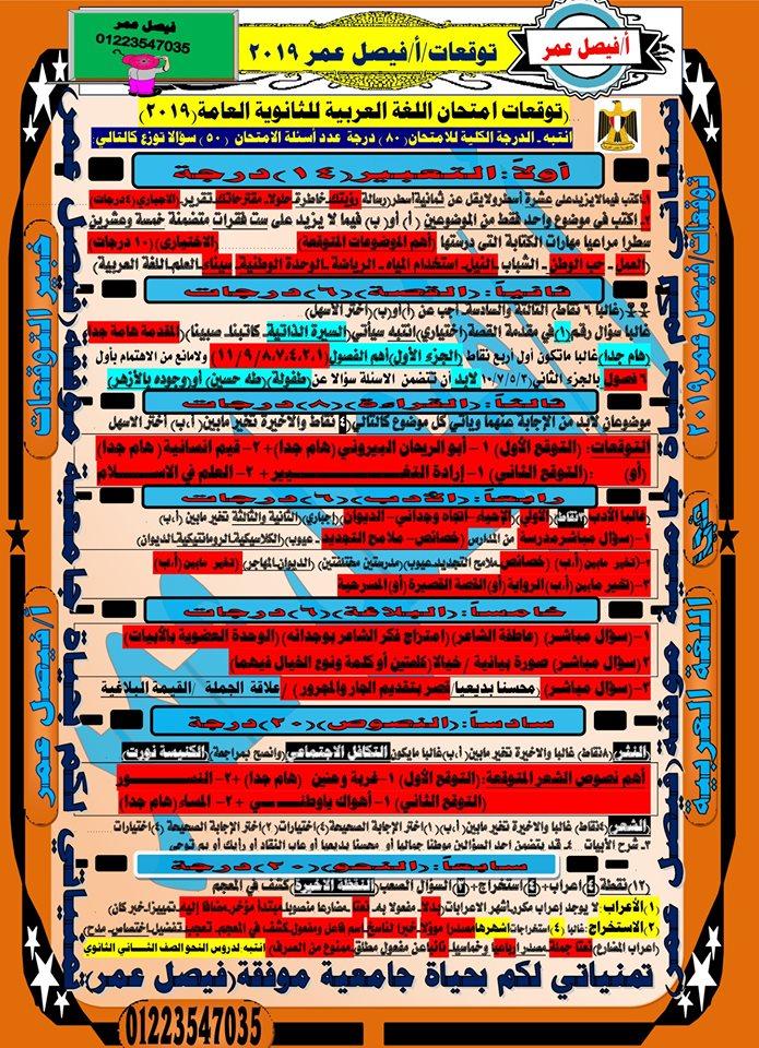 توقعات امتحان اللغة العربية للصف الثالث الثانوي 2019 أ/ فيصل عمر  14189