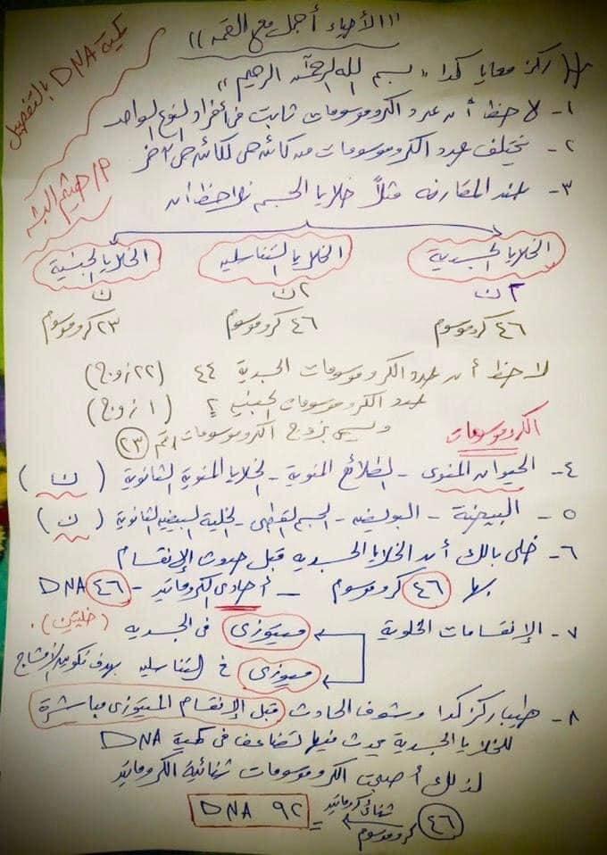مراجعة احياء الـ DNA للصف الثالث الثانوي على النظام الجديد للثانوية العامة 14322