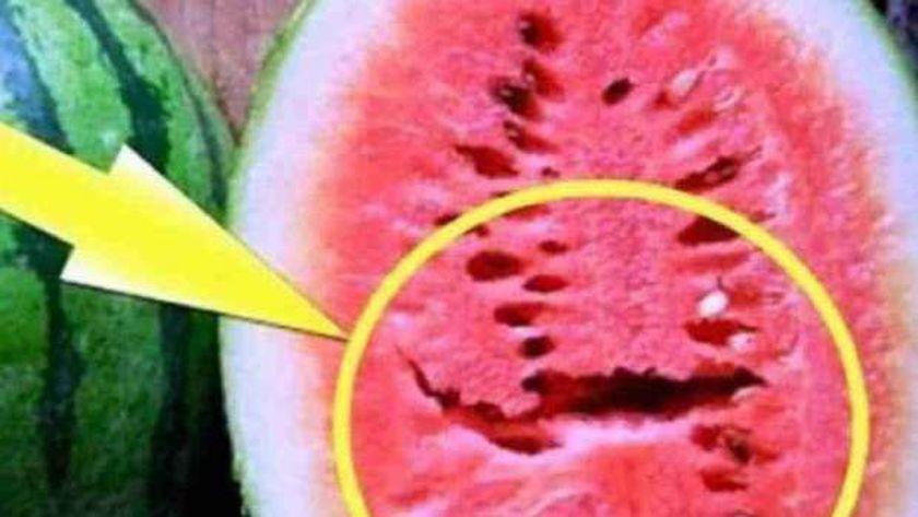 """حقيقة """"البطيخ المسرطن"""".. تحرك رسمي من البرلمان.. ووزارة الزراعة تكشف حقيقة تسبب البطيخ في التسمم 14869610"""