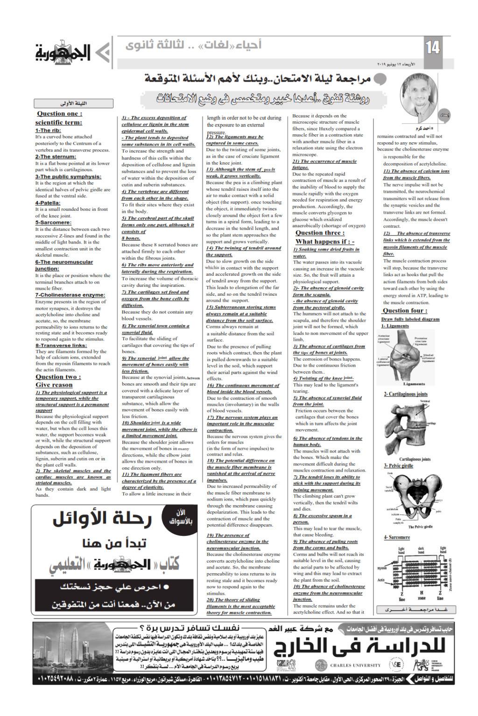مراجعة أحياء لغات للصف الثالث الثانوي - ملحق الجمهورية