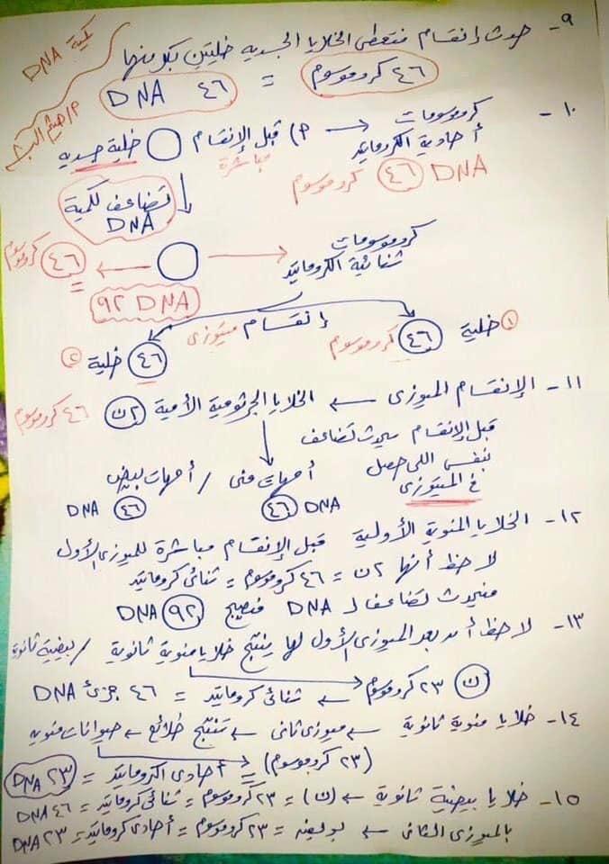 مراجعة احياء الـ DNA للصف الثالث الثانوي على النظام الجديد للثانوية العامة 15178