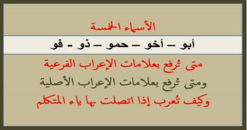الاسماء الخمسه للصف السادس الابتدائي شرح الاستاذ عبدالحميد عيسي 1784