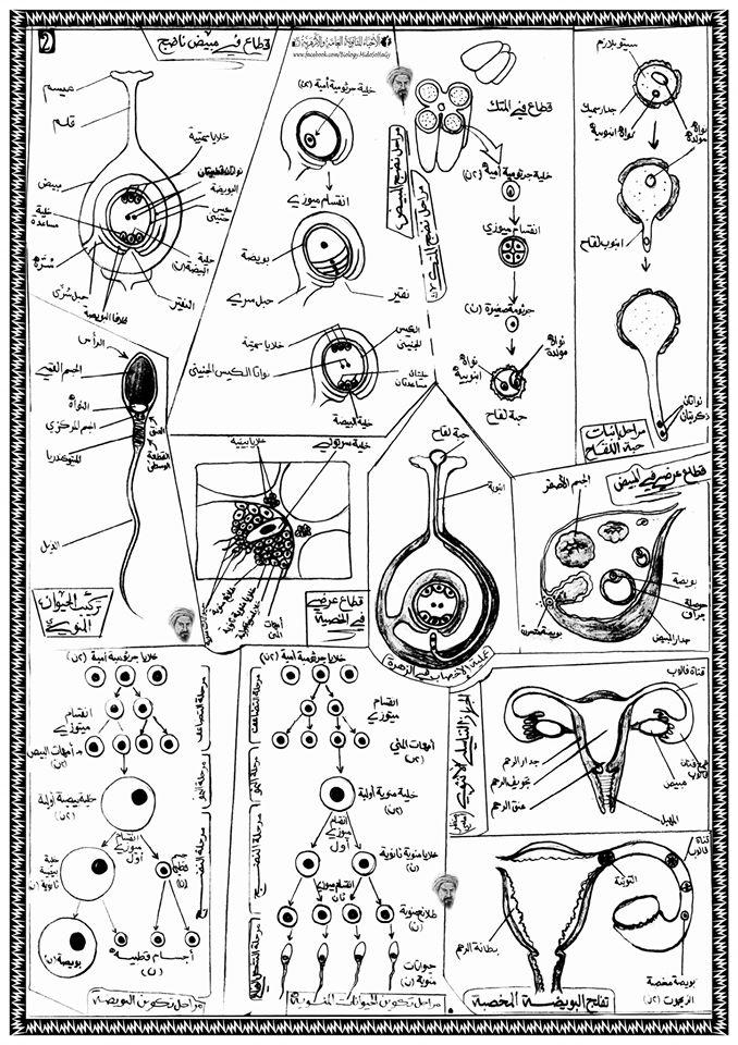 أطلس جميع رسومات الأحياء المقررة على طلاب الثانوية العامة 18124