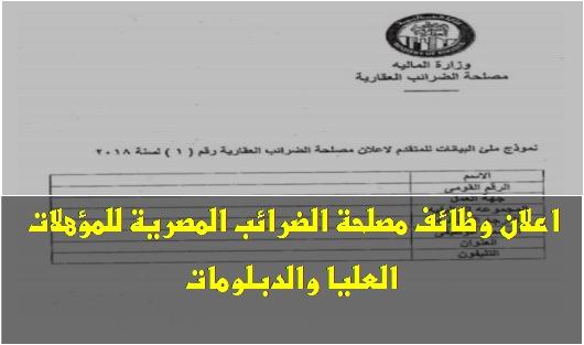 وظائف مصلحة الضرائب المصرية للمؤهلات العليا والدبلومات.. قدم الآن 182
