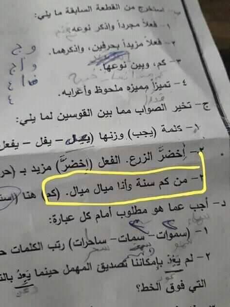 عمرو دياب يثير الجدل في امتحان اللغة العربية للصف الثاني الاعدادي بقنا 2019_511
