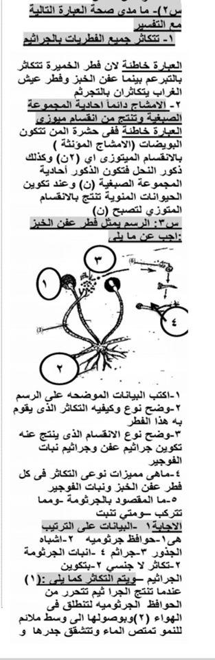 مراجعة أحياء للثانوية العامة مستر/ مصطفي البطيني 21569