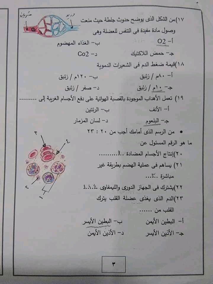 امتحان احياء محلول للصف الثاني الثانوي حسب النظام الجديد 31466