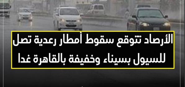 الأرصاد l أمطار رعدية تصل للسيول بسيناء وخفيفة بالقاهرة غدا وانخفاض في درجات الحرارة من الثلاثاء 41127