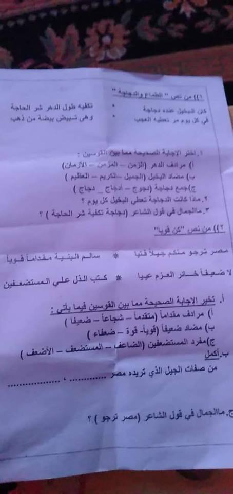 امتحان اللغة العربية للصف السادس الابتدائي ترم أول 2019 إدارة الشرابية التعليمية بالقاهرة 4392