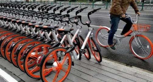 """التعليم يوافق على مقترح مشروع """"دراجة لكل طالب"""" 4738"""