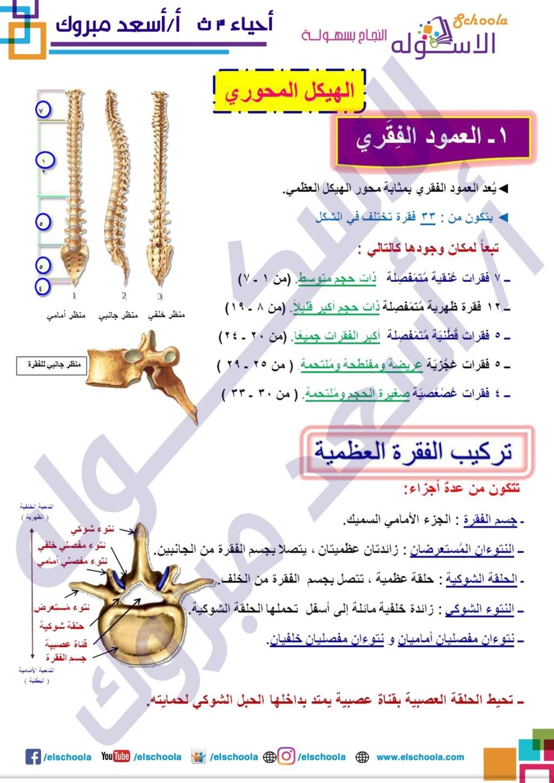 مراجعة الدعامة والحركة أحياء الصف الثالث الثانوي..أ/ أسعد مبروك 51047