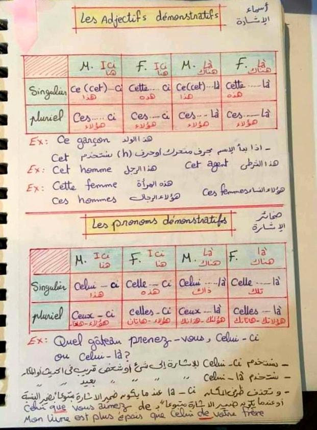 مراجعة لغة فرنسية | صفات الإشارة وضمائر الإشارة 51264