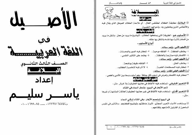 مراجعة بلاغة ثالثة ثانوي 2019..  مذكرة الاصيل في البلاغة للثانوية العامة أ/ ياسر سليم 519