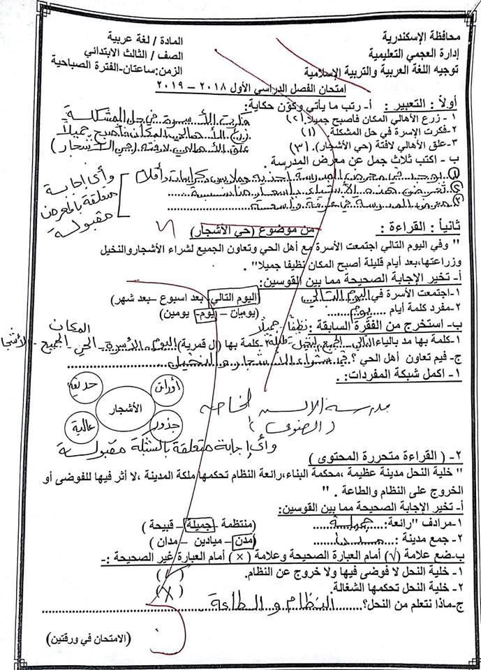 إجابة امتحان العربي للصف الثالث الابتدائي ترم أول 2019 إدارة العجمي التعليمية 5331
