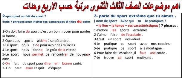 مراجعة لغة فرنسية للصف الثالث الثانوي في 3 ورقات.. مسيو ابراهيم 54127