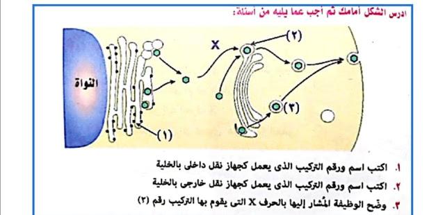 أحياء|  اختبار علي تركيب الخليه للصف الأول الثانوي مستر/ محمد عياد 66666610