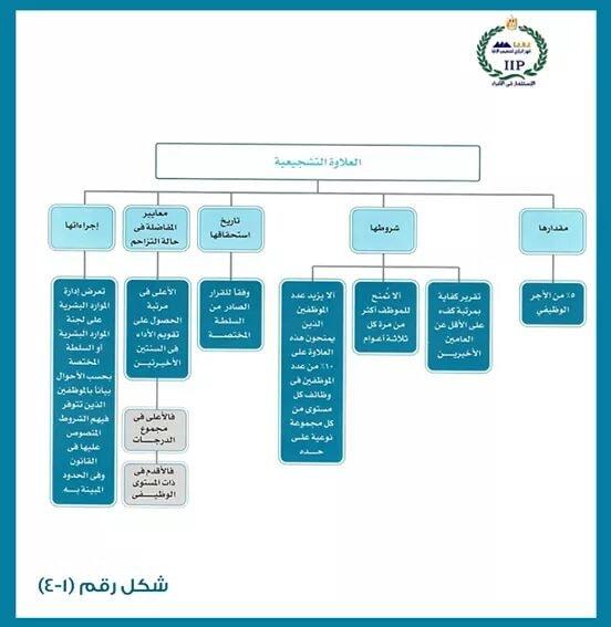 الفرق بين العلاوة الدورية والخاصة والتشجيعية وشروط كل منها 837