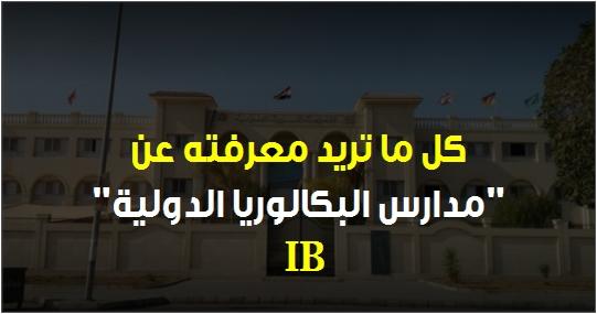 أهم المعلومات حول مدارس (البكالوريا الدولية) التى تريد الوزارة التوسع في تجربتها 981