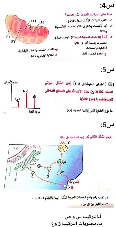 أحياء|  اختبار علي تركيب الخليه للصف الأول الثانوي مستر/ محمد عياد 99999_10