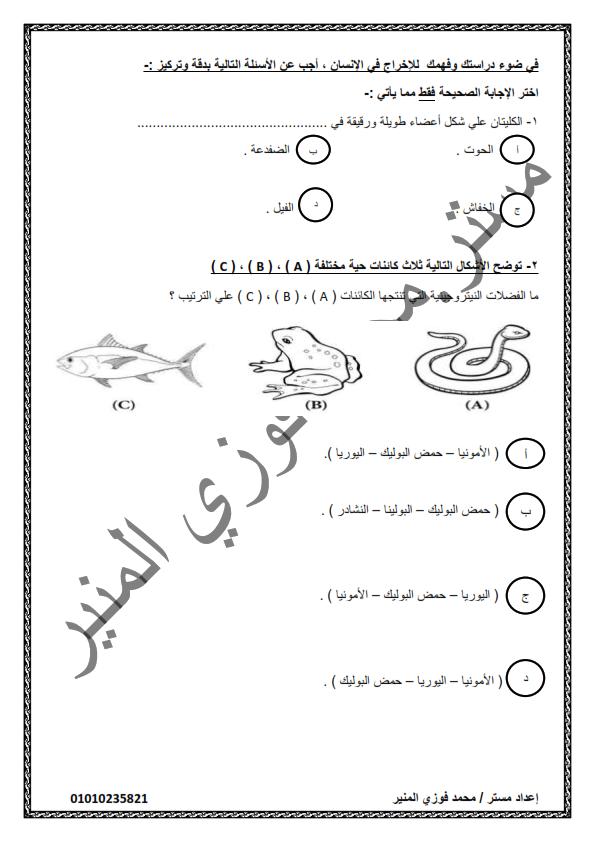 امتحان تجريبي أحياء الصف الثاني الثانوي نظام حديث الفصل الدراسى الثانى 2020 Aoya_o29