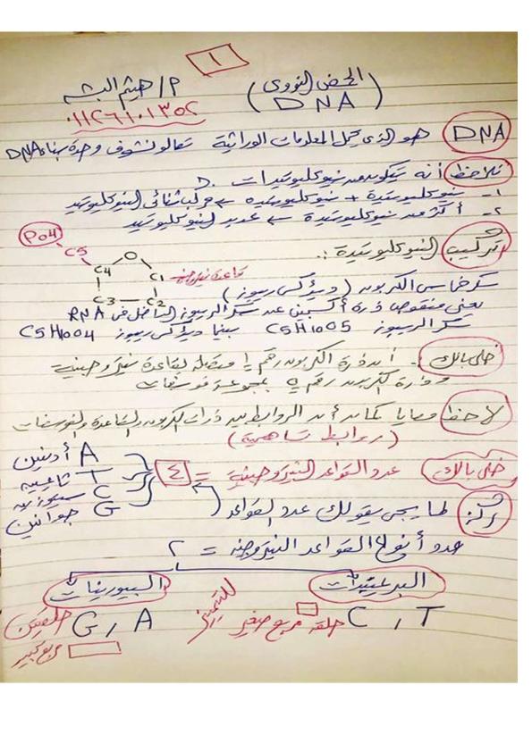 ملزمة مراجعة DNA  احياء 3 ثانوي بخط اليد كاملا للاستاذ هيثم البشه C_a_o_10