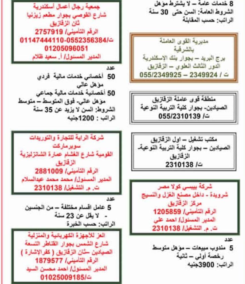 برواتب تصل لـ5000 جنيه.. القوى العاملة تعلن عن وظائف وآخر موعد للتقديم نهاية شهر نوفمبر Iia1-e10