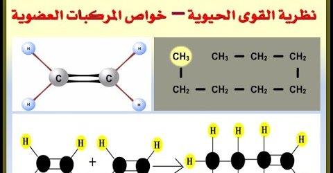 مراجعة الكيمياء العضوية  للصف الثالث الثانوي نظرية القوى الحيوية – خواص المركبات العضوية Safe_260