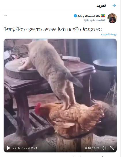 كلب وفرخة.. رئيس الوزراء الإثيوبي أبي أحمد ينشر فيديو غريب على تويتر  Untitl57