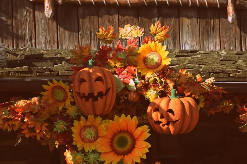 une petite journée d' Halloween  Dsc_0024