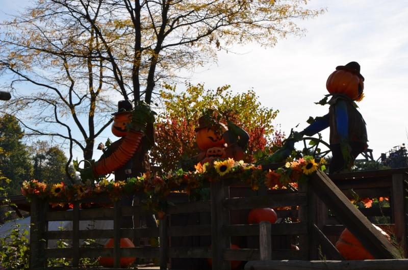 une petite journée d' Halloween  Dsc_0025