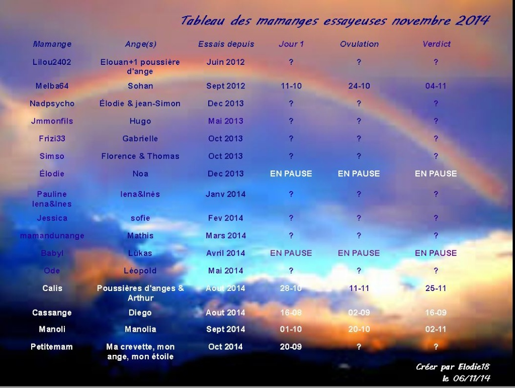 Tableau des essayeuses pour le mois de novembre Captur11