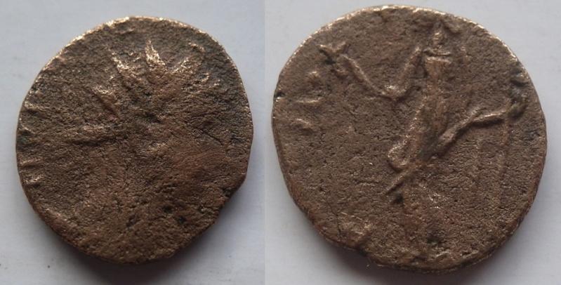 votre avis sur cette romaine P1110010