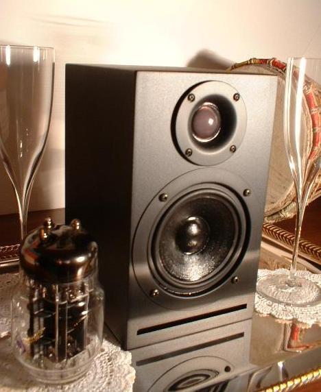 Coppia diffusori max 500€ Spika010