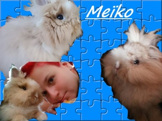 Meiko,  mon filleul Sans_t12