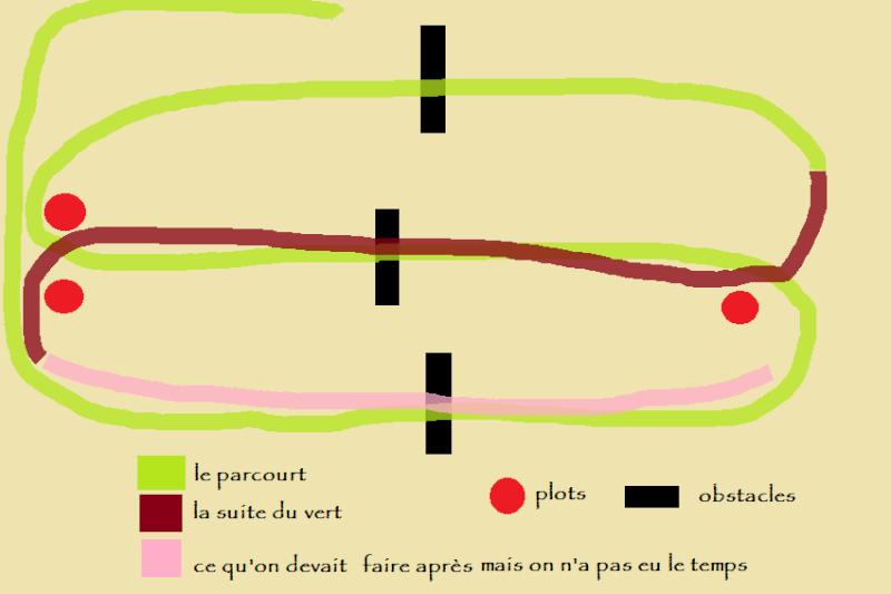 05/11/2014 lucimad horse Parcou10