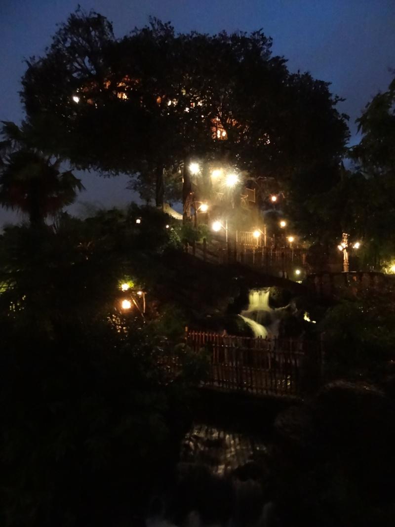 Vos photos nocturnes de Disneyland Paris - Page 5 Dsc03311