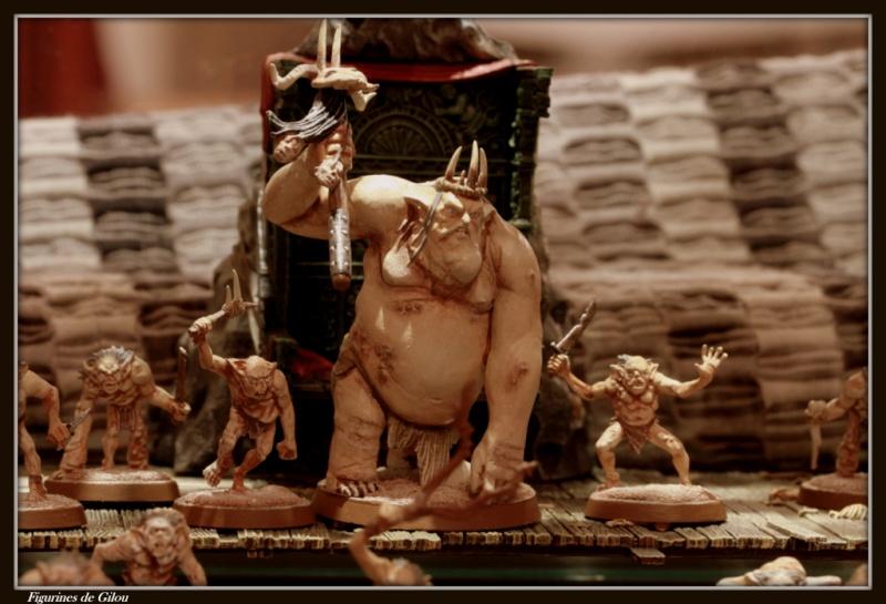 Galerie The Hobbit [Gobelins...] Img_7214