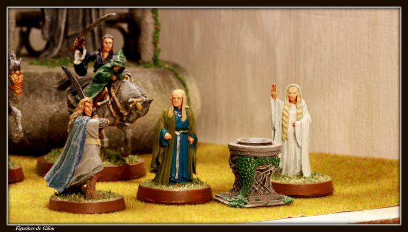 Galerie Elfes du troisième Age Img_7218